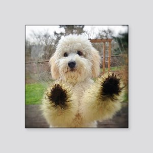 "Goldendoodle Puppy Dog Square Sticker 3"" x 3"""