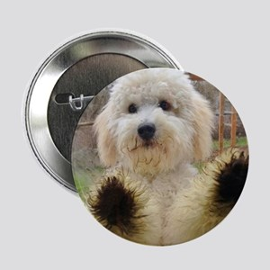 "Goldendoodle Puppy Dog 2.25"" Button"