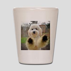 Goldendoodle Puppy Dog Shot Glass