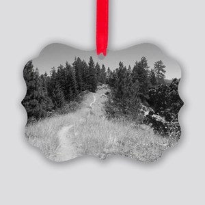 mountain bike shirt Picture Ornament