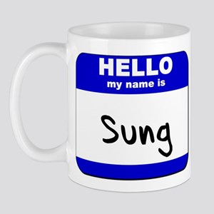 hello my name is sung  Mug