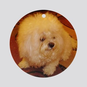 Coco Smiles Round Ornament