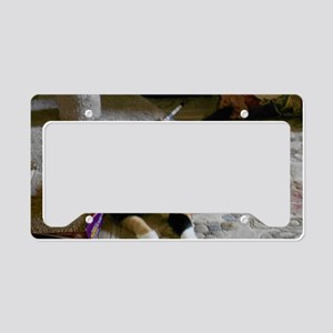 Molly License Plate Holder