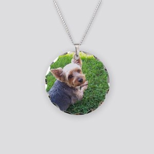 Attention dog loverAdorable  Necklace Circle Charm