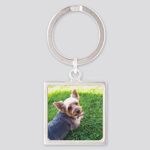 Attention dog loverAdorable little Square Keychain