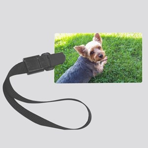 Attention dog loverAdorable litt Large Luggage Tag