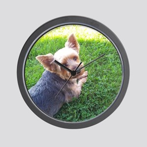 Attention dog loverAdorable little York Wall Clock