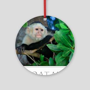 Monkey Roatan Round Ornament