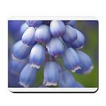 Blue Grape Hyacinth Mousepad