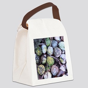 Nuts about Molokai Canvas Lunch Bag