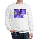 Lavender Iris Sweatshirt