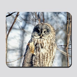 Gray Owl 35x21 Wall Peel-7700hx4900w Mousepad