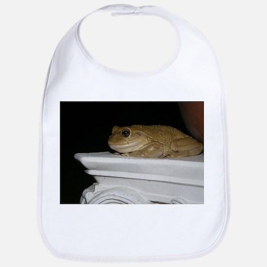 Happy Frog 2 Bib