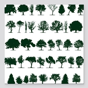 "Tree Silhouettes Green 1 Square Car Magnet 3"" x 3"""