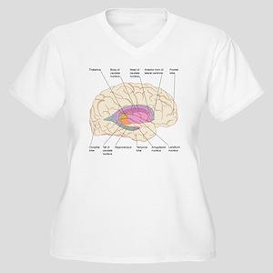 Basal ganglia, ar Women's Plus Size V-Neck T-Shirt