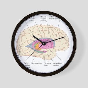 Basal ganglia, artwork Wall Clock