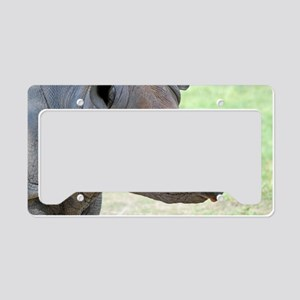 Black Rhino Wall Decal License Plate Holder