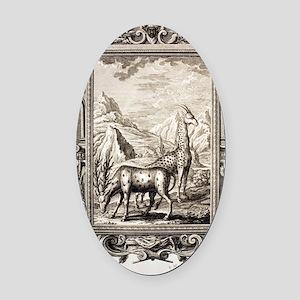 1731 Johann Scheuchzer Bible giraf Oval Car Magnet