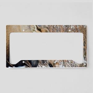 Winter Moose License Plate Holder