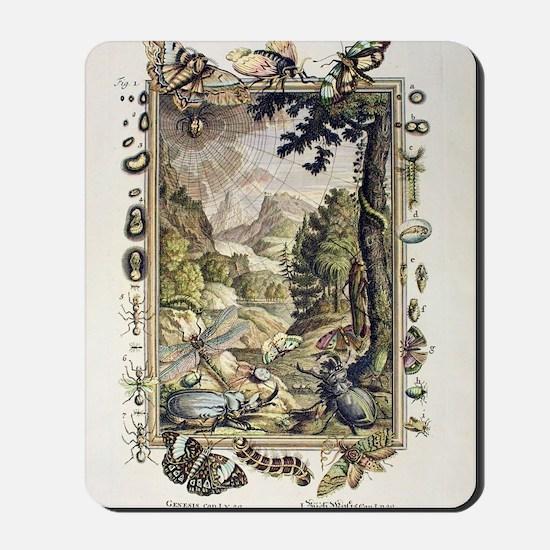 1731 Johann Scheuchzer Creation 5/6th da Mousepad