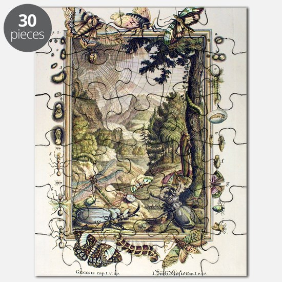 1731 Johann Scheuchzer Creation 5/6th day Puzzle