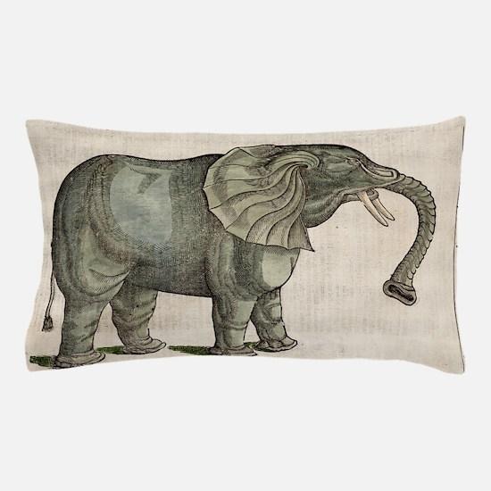 c0087953 Pillow Case