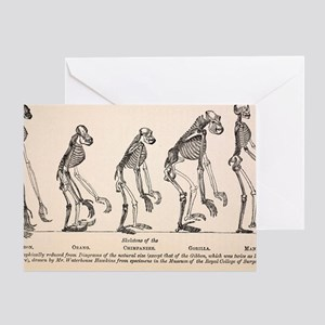 1863 Huxley from Ape to Man evolutio Greeting Card
