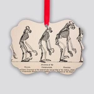 1863 Huxley from Ape to Man evolu Picture Ornament