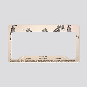 1863 Huxley from Ape to Man e License Plate Holder