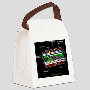 Axon anatomy, diagram Canvas Lunch Bag
