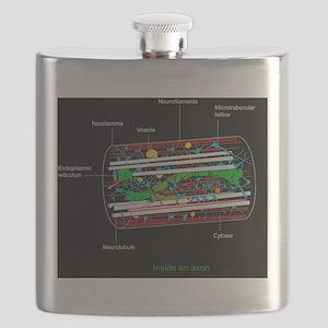 Axon anatomy, diagram Flask
