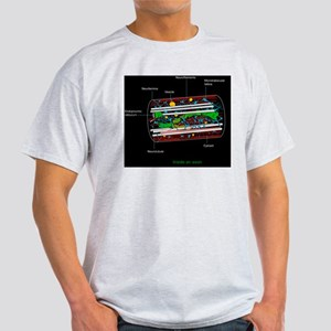 Axon anatomy, diagram Light T-Shirt