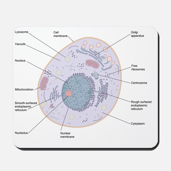 Animal cell structure Mousepad