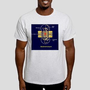 Bacteriorhodopsin, diagram Light T-Shirt