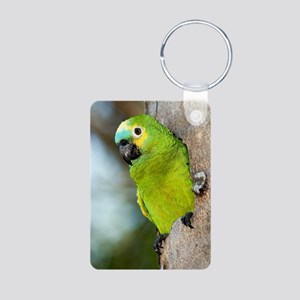 Blue-fronted parrot Aluminum Photo Keychain