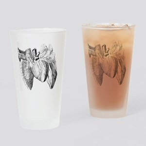 Heart and lung anatomy, 17th centur Drinking Glass