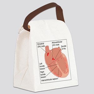 Heart conduction system, artwork Canvas Lunch Bag