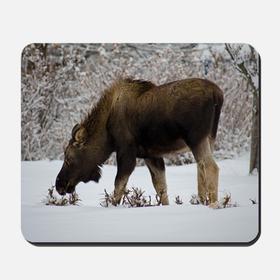 Hungry Moose Mousepad