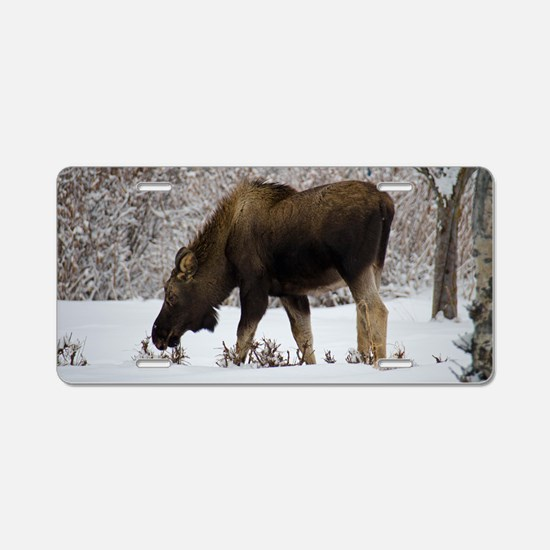 Hungry Moose Aluminum License Plate