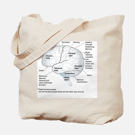 Functional areas of the brain, artwork Tote Bag
