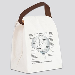 Functional areas of the brain, ar Canvas Lunch Bag