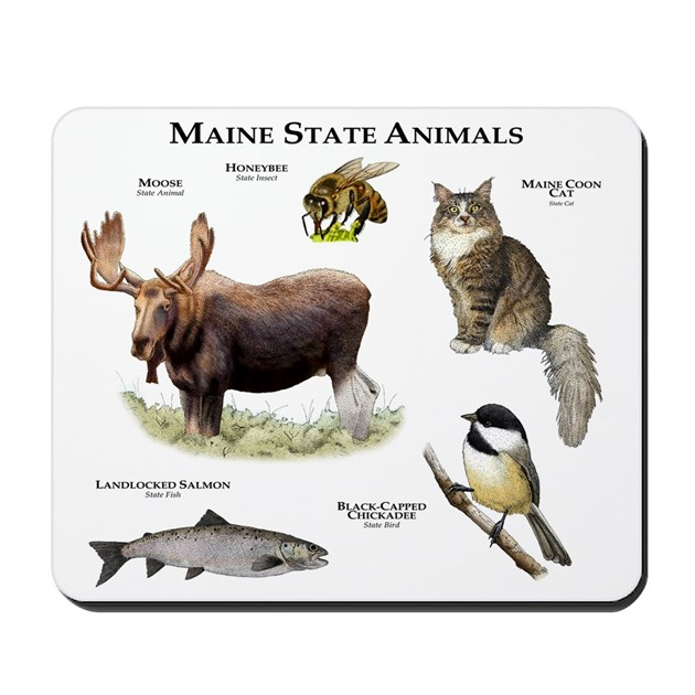 Maine State Animals Mousepad By Wildlife Art Roger Hall