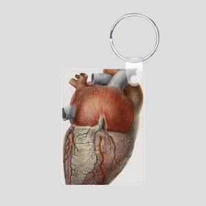 Heart anatomy, 19th Centur Aluminum Photo Keychain