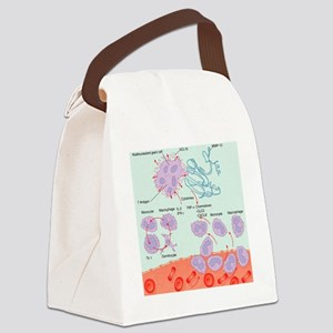 Human immune response, artwork Canvas Lunch Bag