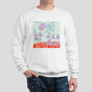 Human immune response, artwork Sweatshirt