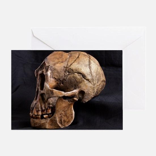 Homo floresiensis skull Greeting Card