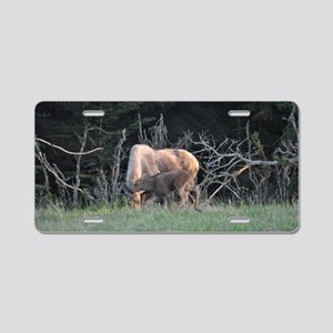 Mother Moose and Calf Aluminum License Plate
