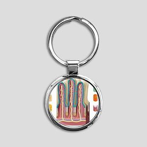 Intestinal villi anatomy, artwork Round Keychain