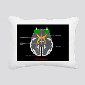 Visual pathways, artwork Rectangular Canvas Pillow