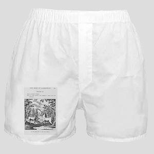 Alchemy Boxer Shorts